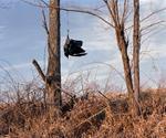 Aaron Blum: Scare Crow, 2010