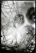 Bill Westheimer: Collodion Wire Balls 12, 2002
