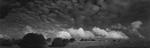David H. Gibson: Cloud March, Fort Davis, Texas, 1988