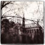Keith Carter: Notre Dame Study No. 1, 1999