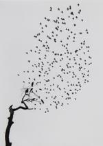 Kindred Spirits: Pentti Sammallahti – Delhi, India, 1999