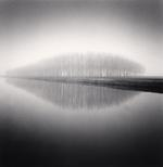 Michael Kenna: Copse Reflection, Vendramin, Veneto, Italy, 2007