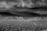 Mitch Dobrowner: City-Lights, 2014