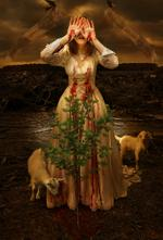 Tom Chambers: Meant for Love, 2009